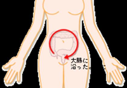 大腸2.png